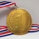 Gold Medal Foiled Solid Milk Chocolate