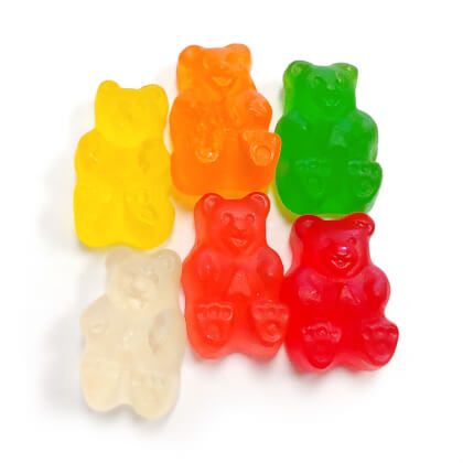 Sugar Free Gummi Bears 9 oz