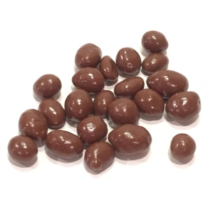Sugar Free Chocolate Covered Peanuts 8 oz